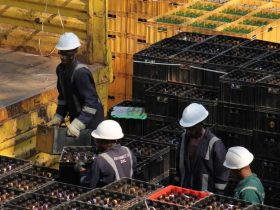 Workers in an EABL Plant